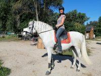 Sylvia mit Spanier DaCapo